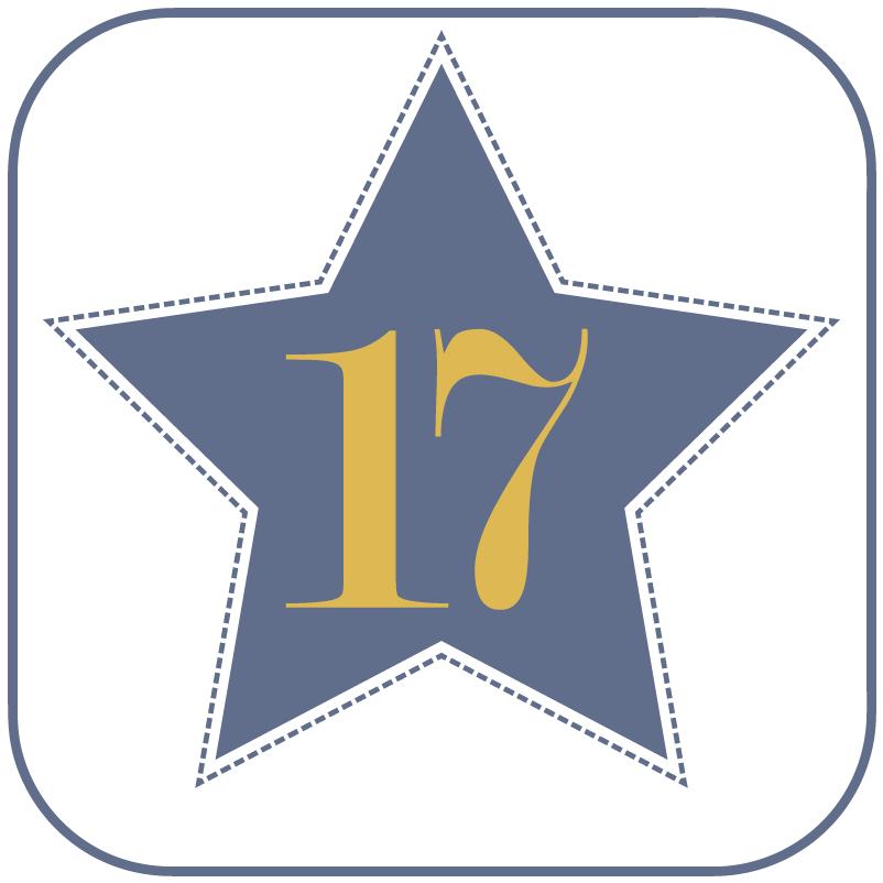 17 – Plotterdatei und Bügelbilder Lama